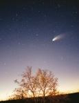 Comet Hale Bopp in 1997